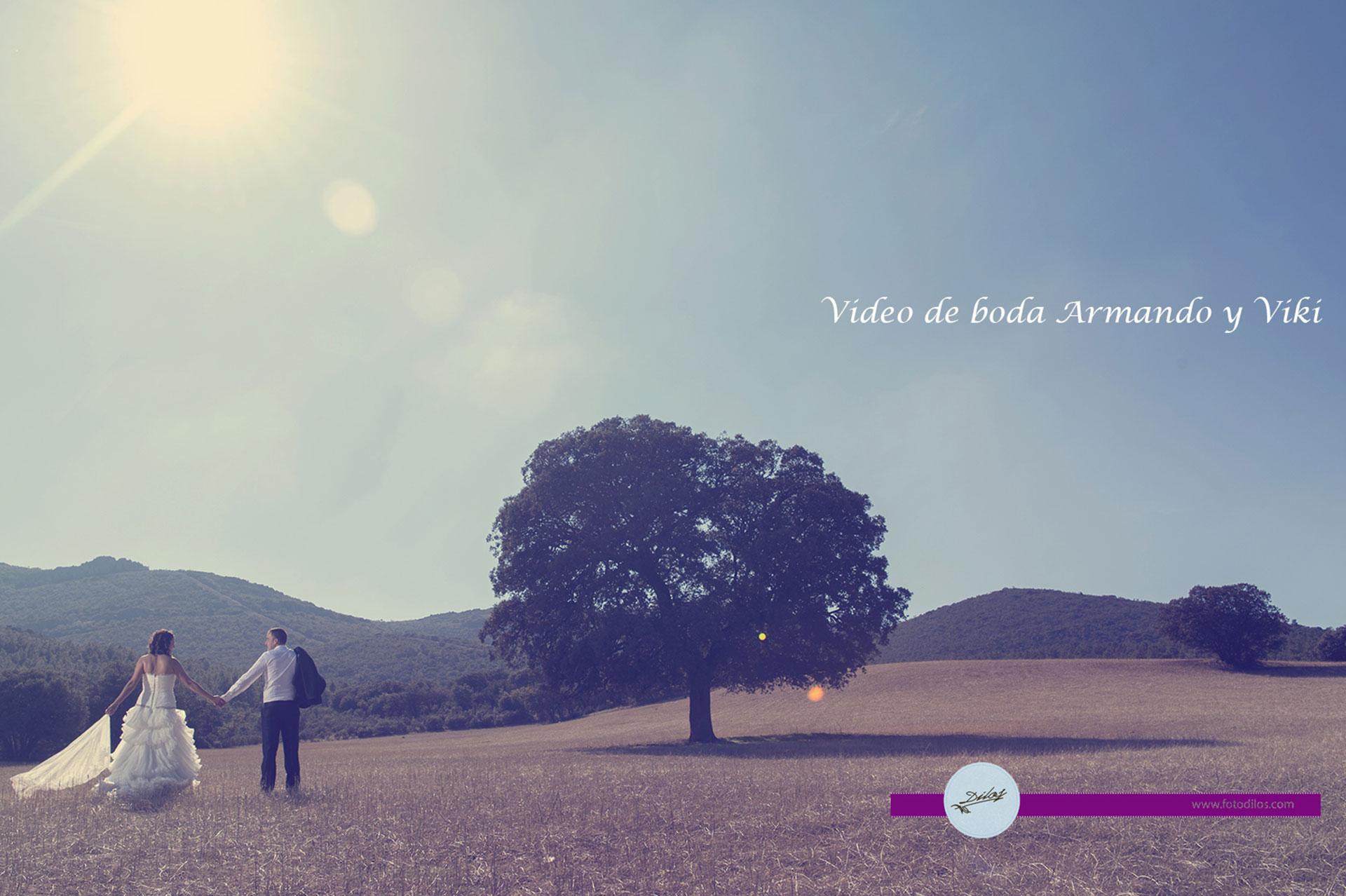 Vídeo de boda en la Mancha, Armando y Viki