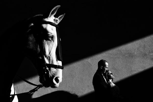 sesión de Post boda con caballos (12)